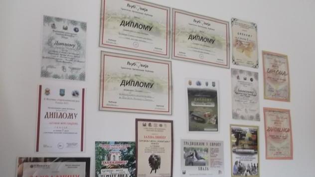 Diplome i zahvalnice Udruženja Temištanka - © Foto: Gordana Simonović Veljković