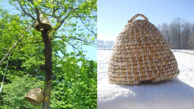 Hvatanje roja i trnka na snegu  - © Porodica Trninić