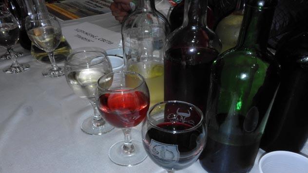 Trstenička vina - © Danijela Jovanović/Agromedia