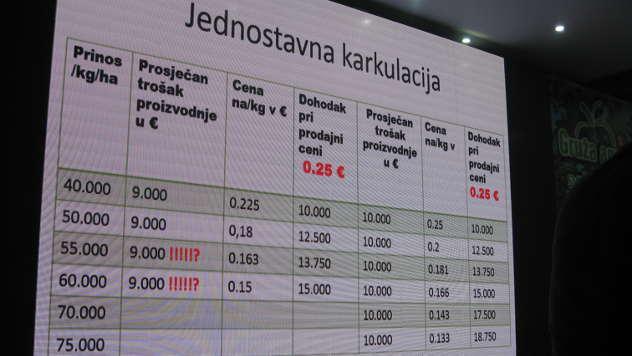 Kalkulacija profesora Štampara - © Foto: Biljana Nenković