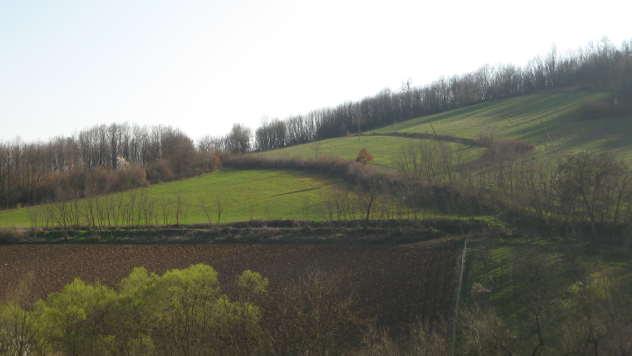 Panorama Rače - © Foto: Biljana Nenković