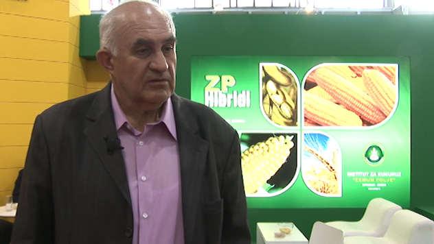 dr Života Jovanović, Institut za kukuruz Zemun Polje - ©Agromedia