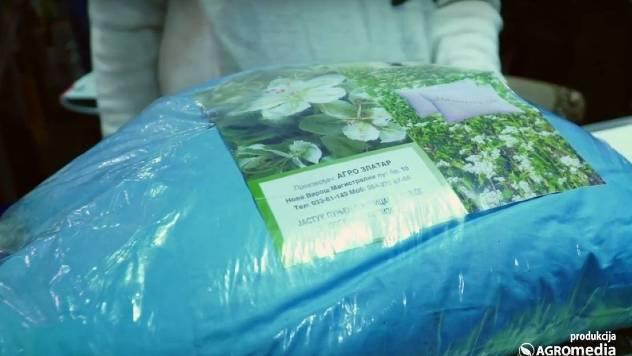 ZLATARSKI SAN Jastuk punjen ljuspicama organske heljde- © Agromedia