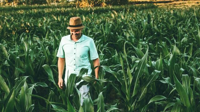 farmer u basti