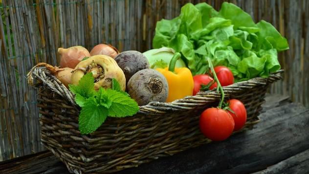 Planiranje sadnje: Koliko je potrebno biljaka po osobi - © Pixabay