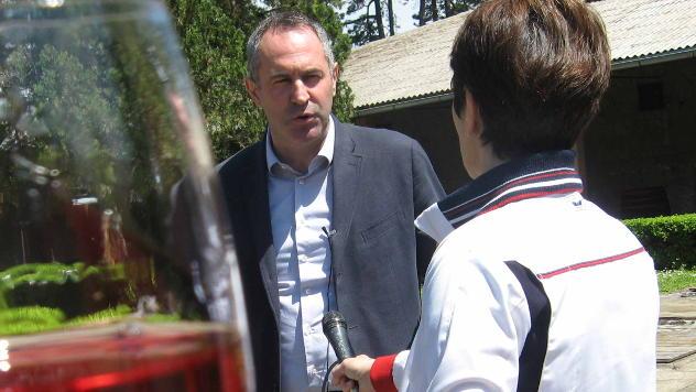 Boža Aleksandrović, predsednik udruženja vinara Šumadije © Foto: Biljana Nenković