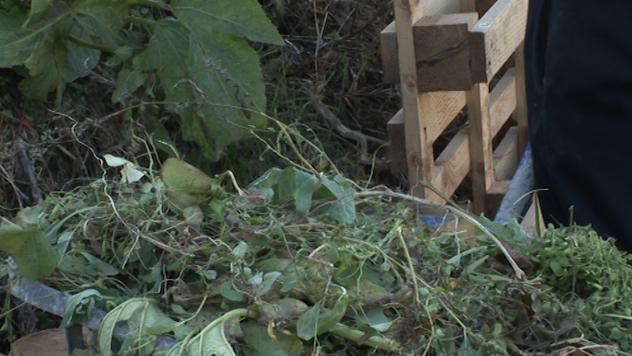 Kompost - ©Agomedia