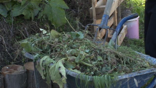 Kompost - ©Agromedia