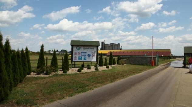 Global seed, farma krava - ©Agromedia