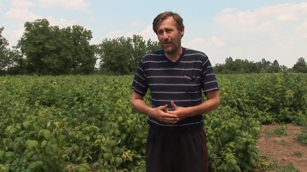 """Aleksandar Čvarković, zadrugar iz ZZ """"Doroslovo"""" - ©Agromedia"""