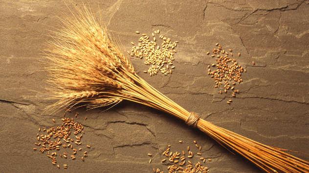 Pšenica - ©Pixabay