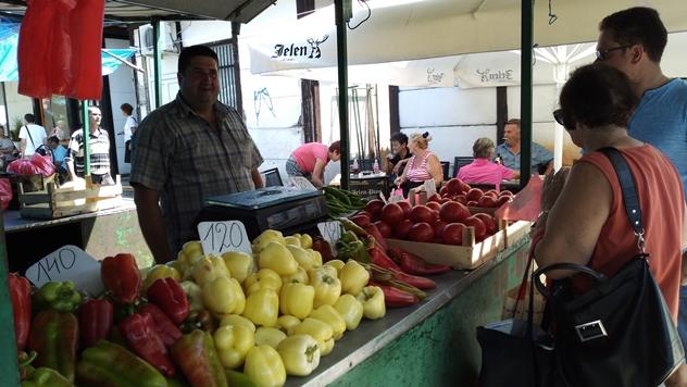 Paradajz po istoj ceni kao i jaganjad - © Dejan Davidović/Agromedia