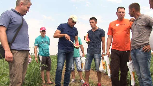 Dan polja lubenice u Ašanji - ©Agromedia