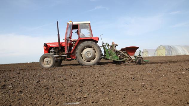 Traktor  - © Foto: Agromedia