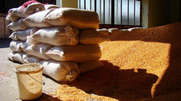 Skladište poljoprivrednih proizvoda - @Agromedia