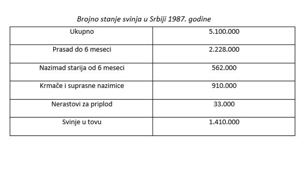 Prikaz stanja u svinjarstvu 1987. godine - ©Agromedia