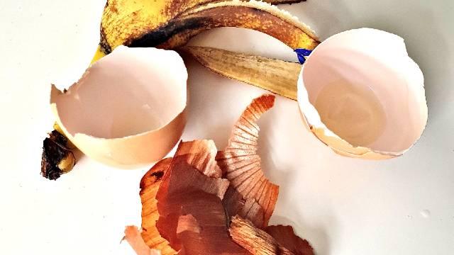 Hranljivo organsko đubrivo za biljke uz pomoć ovih pet otpadaka iz kuhinje © Tanja Prolić Agromedia