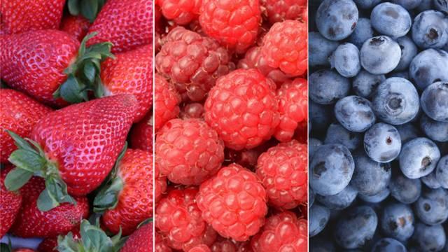 Voće koje brzo raste i lako se gaji - © Agromedia