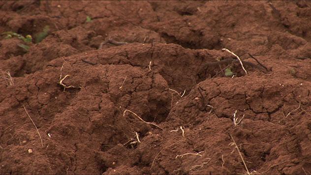 Jesenja obrada zemljišta - @Agromedia