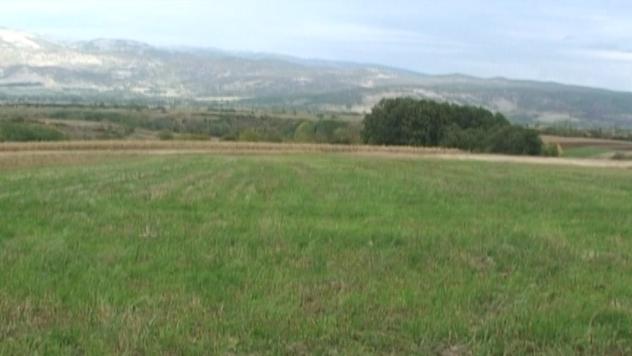 Plodna zemlja u okolini Pirota - ©Agromedia
