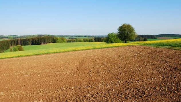 Poljoprivredno zemljište - © Foto: Danijela Jankov