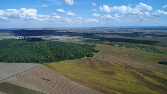 U Vojvodini gajimo maline, a na zapadu žito - Evo šta još ne radimo kako treba - © Agromedia