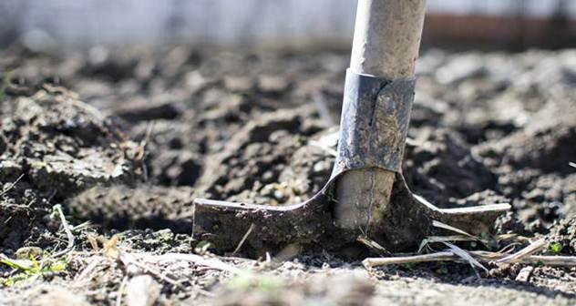 Zakup jednog hektara zemlje na godinu dana košta do 100 evra - © Pixabay
