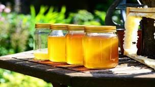 10. Državni pčelarski sajam