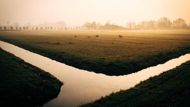 Kanalska mreža - © Pixabay