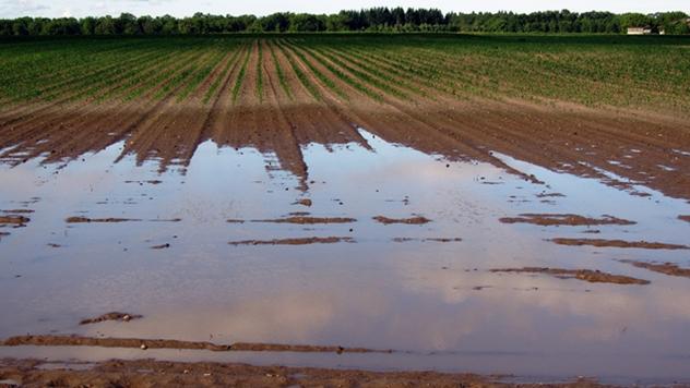 Vremenski uslovi u poljoprivredi - © Pixabay