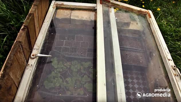 Kako da napravite klijarnik za povrće i cveće - © Agromedia