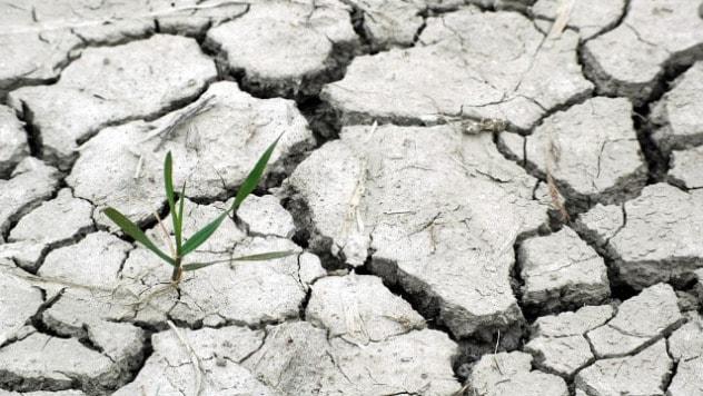 Konkurs za inovacije o klimatskim promenama- ©Pixabay