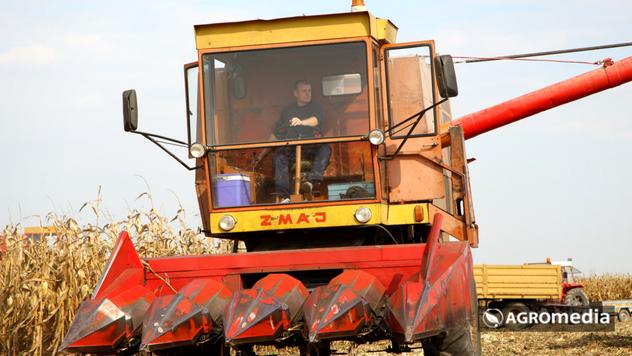 Kombajniranje kukuruza - © Agromedia