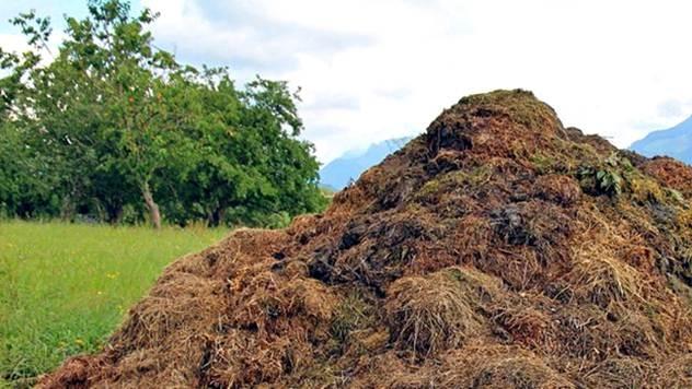 kompost u dvoristu