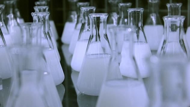 Cena mleka u Srbiji - © Pixabay