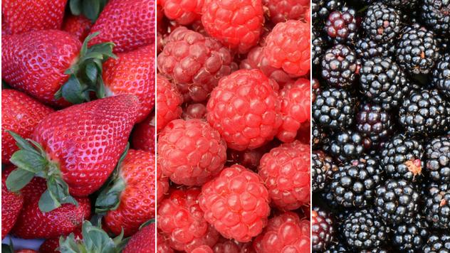 Malina, jagoda i kupina - © Pixabay