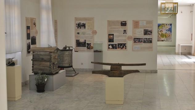 Izlažba u Narodnom muzeju u Kraljevu © Goran Šljivić