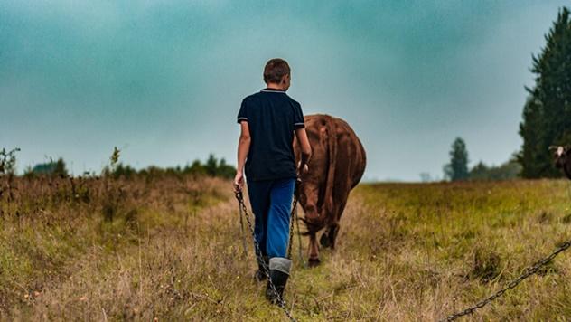 Mladi poljoprivrednici na selu - © Pixabay