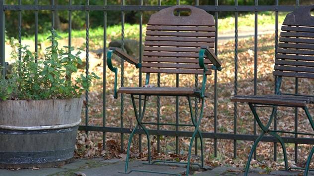 Bogutovačka banja ilustracija - © Pixabay