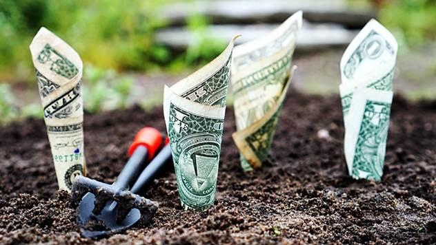 Sredstva za poljoprivredu - © Pixabay