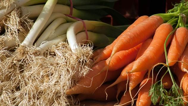 Organska proizvodnja povrća - © Pixabay