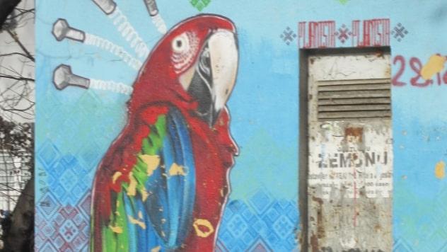 Životinje sve češće na muralima -  © Budimir Novović