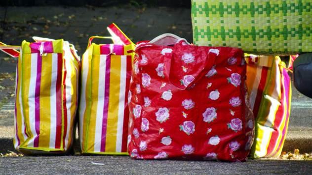 Jagode možete gajiti i u plastičnim torbama - © Pixabay