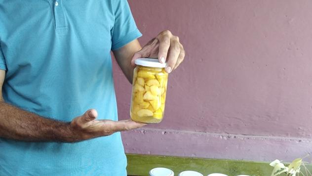 Prerada plodova voća - © Dejan Davidović/Agromedia
