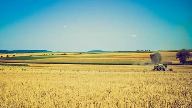 Kakva je za poljoprivrednike bila 2016. godina ? - © Pixabay