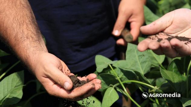 Plodna zemlja - © Agromedia
