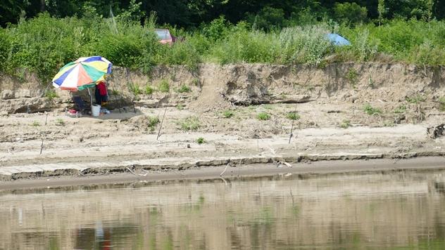 Ilustracija: Ribolov na Dunavu - © Pixabay