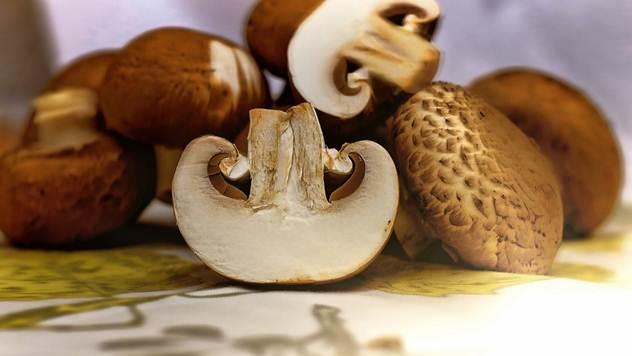 Ne kupuju se samo šampinjoni, pažnju privuklo i šumsko pile - © Wikipedia