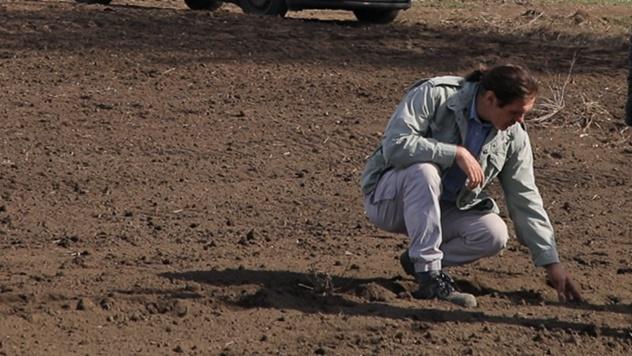 Rezistentnost korova u soji - © Agromedia