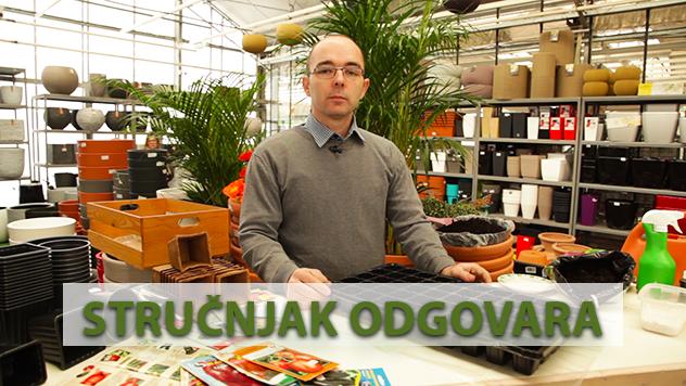 Dipl. inž. Vladimir Milutinović - © Agromedia